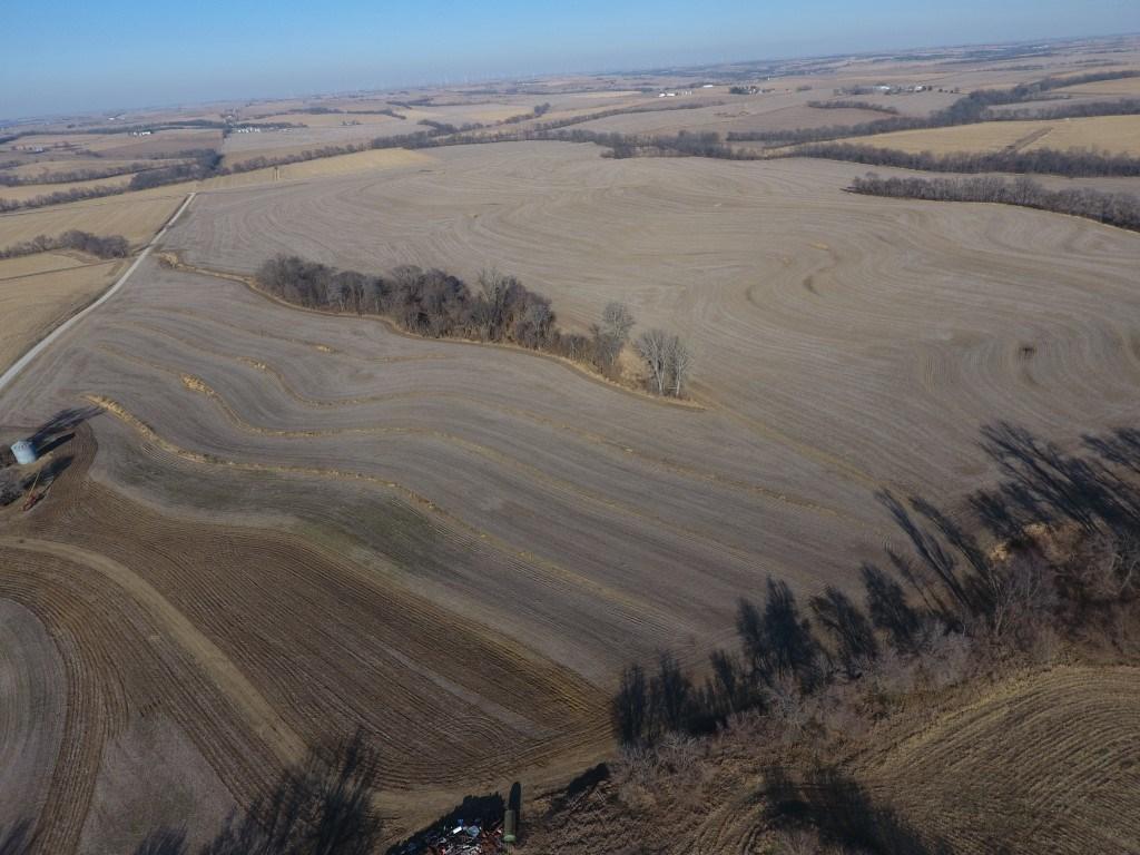 "194+/- Upland Acres, ""a Gem in Holt County"""