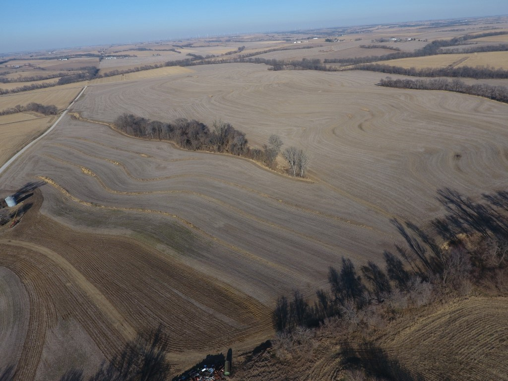 Tract 1 40+/- Acres Outstanding Upland Row Crop Farm