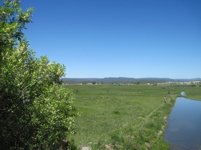 North NM/ Pasture Land/Mt Views/12.2 Ac./Hwy. 84