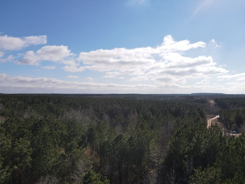 timberland for sale near llittle rock ar
