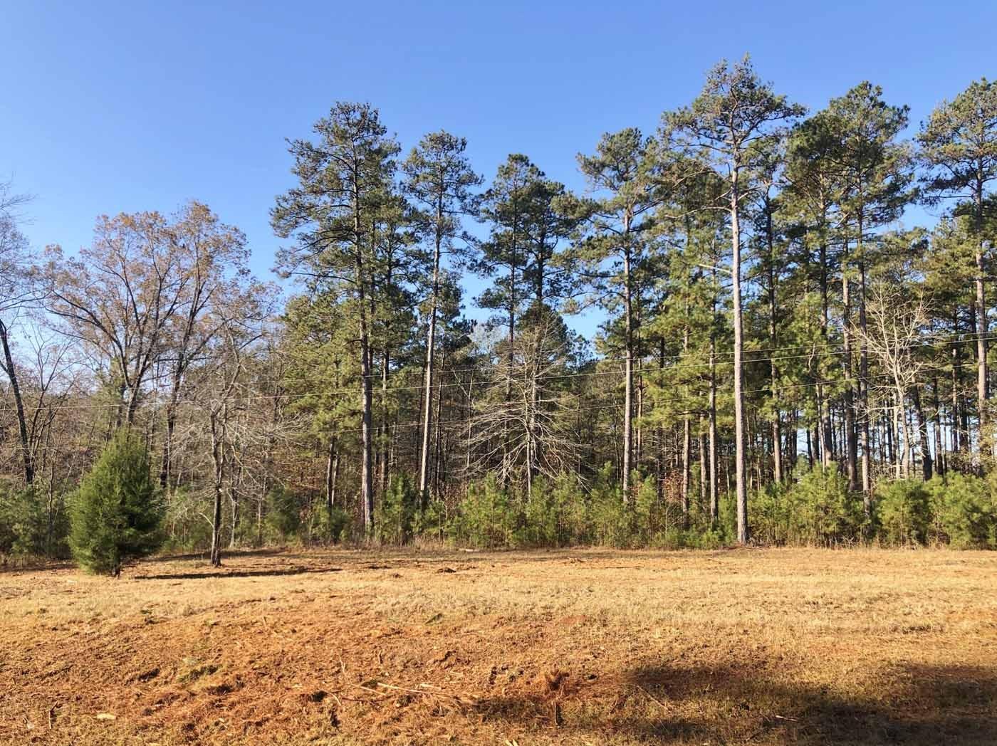 5.55 Acres Land for Sale - Country Estate, Ruston, LA