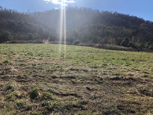 1.86 ACRES UNRESTRICTED LAND FOR SALE IN ROGERSVILLE, TN