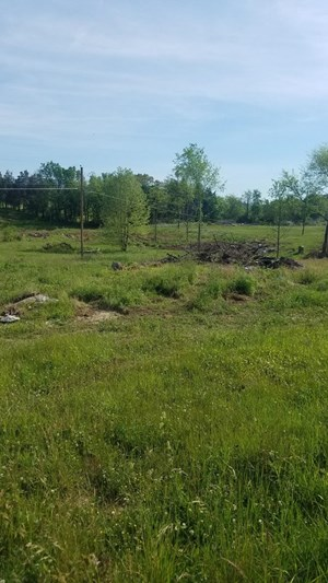 1.27 ACRES OF UNRESTRICTED LAND IN ROGERSVILLE, TN FOR SALE