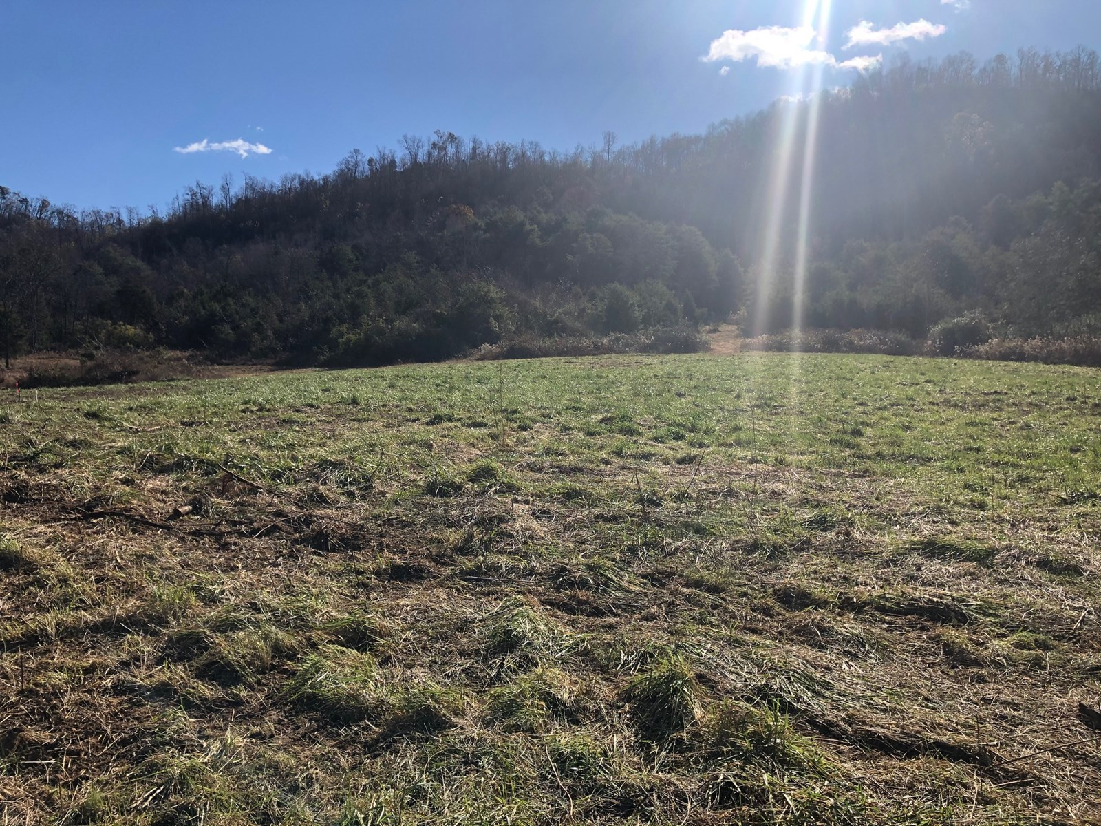 2.53 Acres Unrestricted Land in Rogersville, TN For Sale