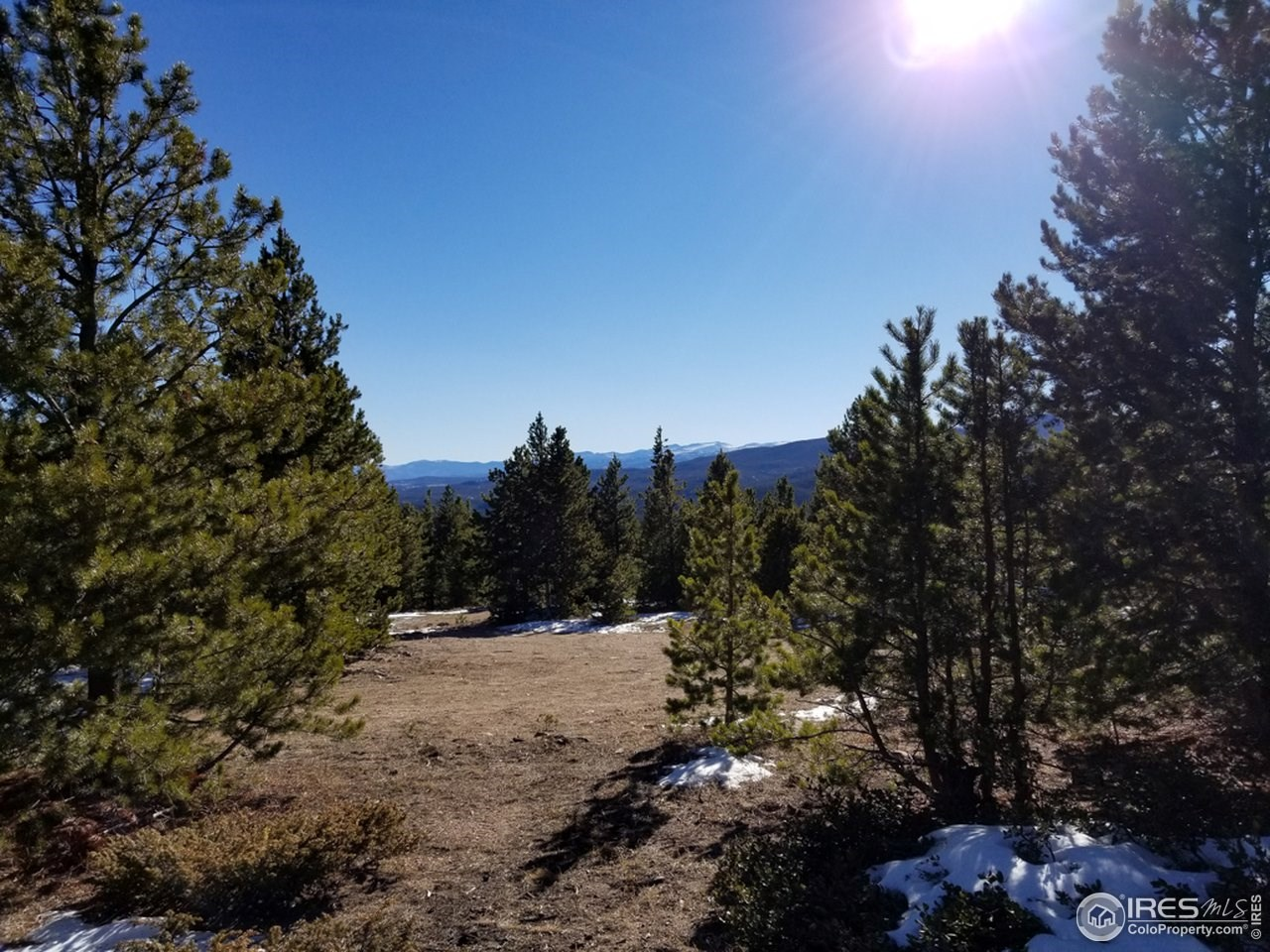 13+ Acres That Borders National Forest