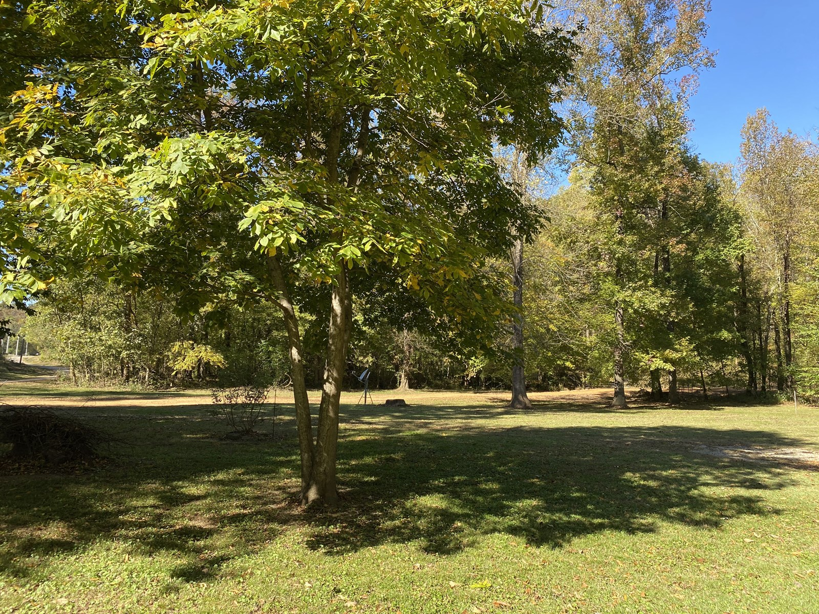 RIVER VIEW LAND FOR SALE IN TN WITH SEPTIC, WATER, ELECTRIC