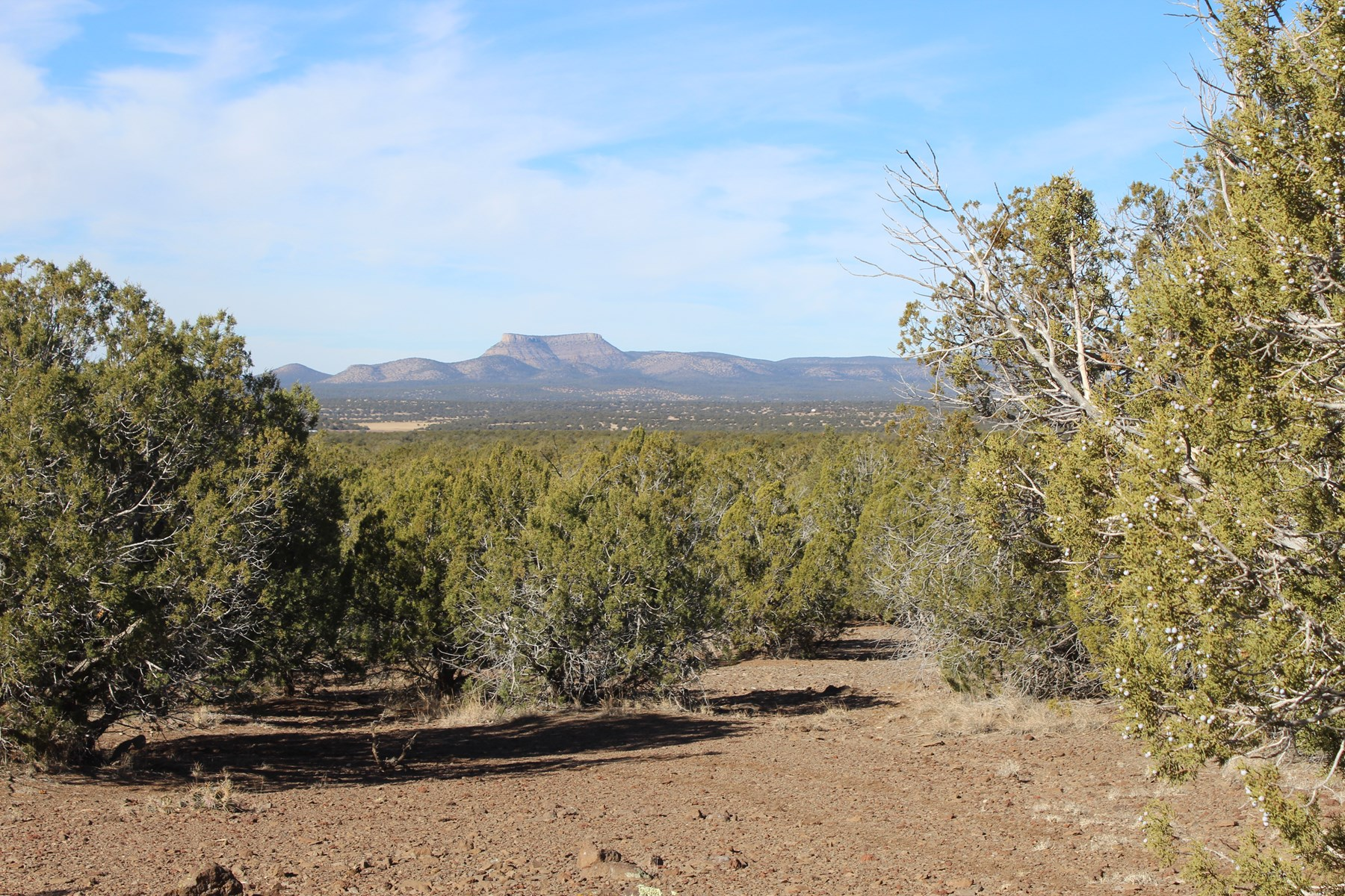 Large Acreage for Sale Borders Public Land Seligman AZ
