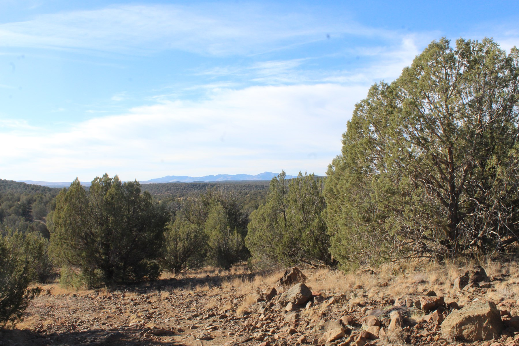 Arizona Mountain Land For Sale, Set up for Camping/Hunting