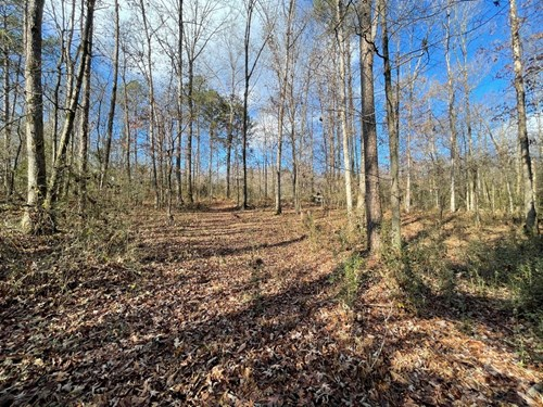Land for Sale with Acreage for Sale in Georgetown, Tennessee