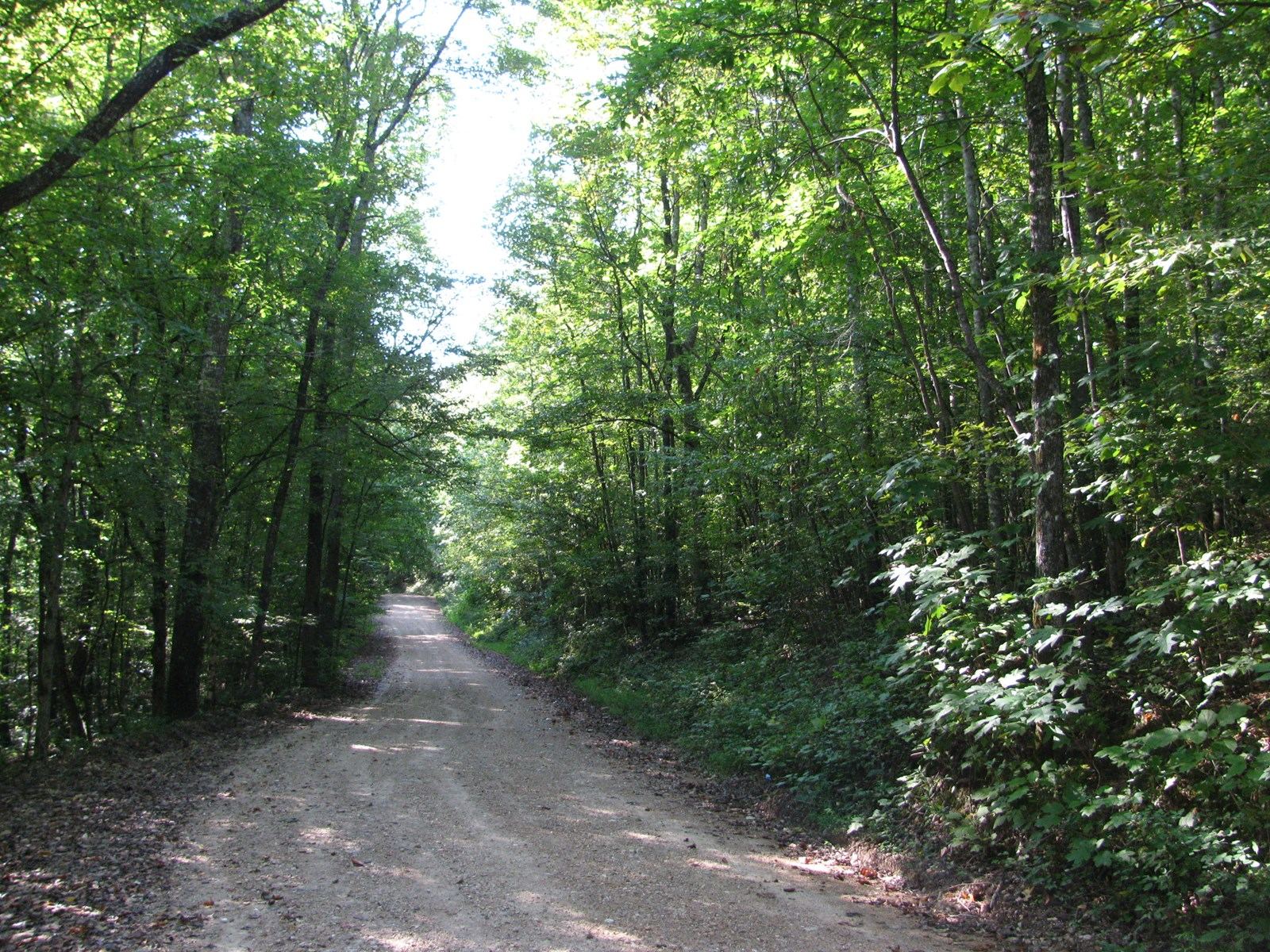LAND FOR SALE IN TENNESSEE, OWNER FINANCING POSSIBLE