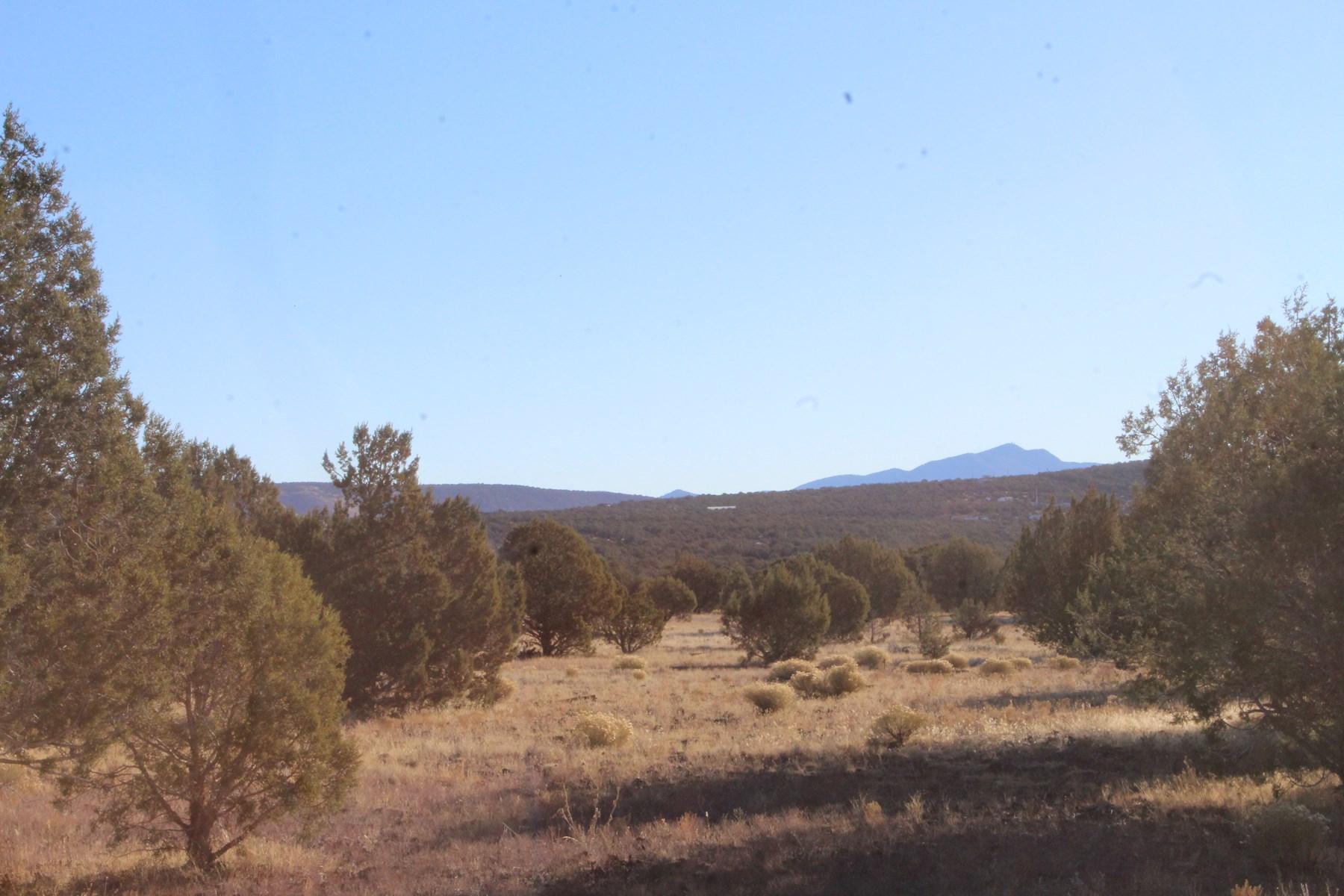 Small Acreage borders Public Land on 2 sides, Northern AZ