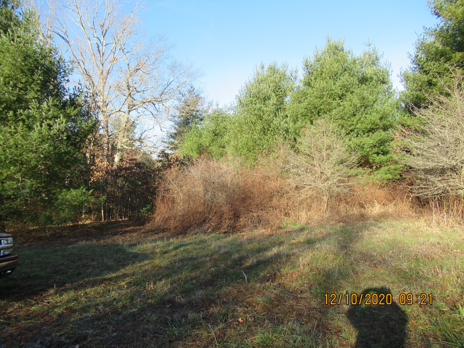 Land for Sale in Willis VA