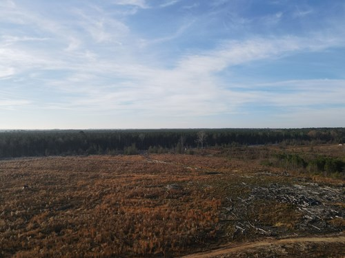Hunting Land in Grant County, Arkansas