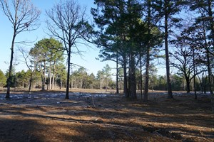 COUNTRY HOMESITE POTEAU OK