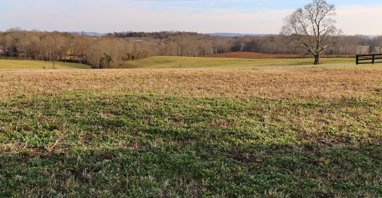 0.92 acre lot for sale near Lake Cumberland Nancy KY