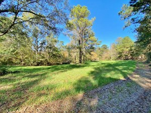 142 ACRE TURNKEY HUNTING PROPERTY FOR SALE WILKINSON CO, MS