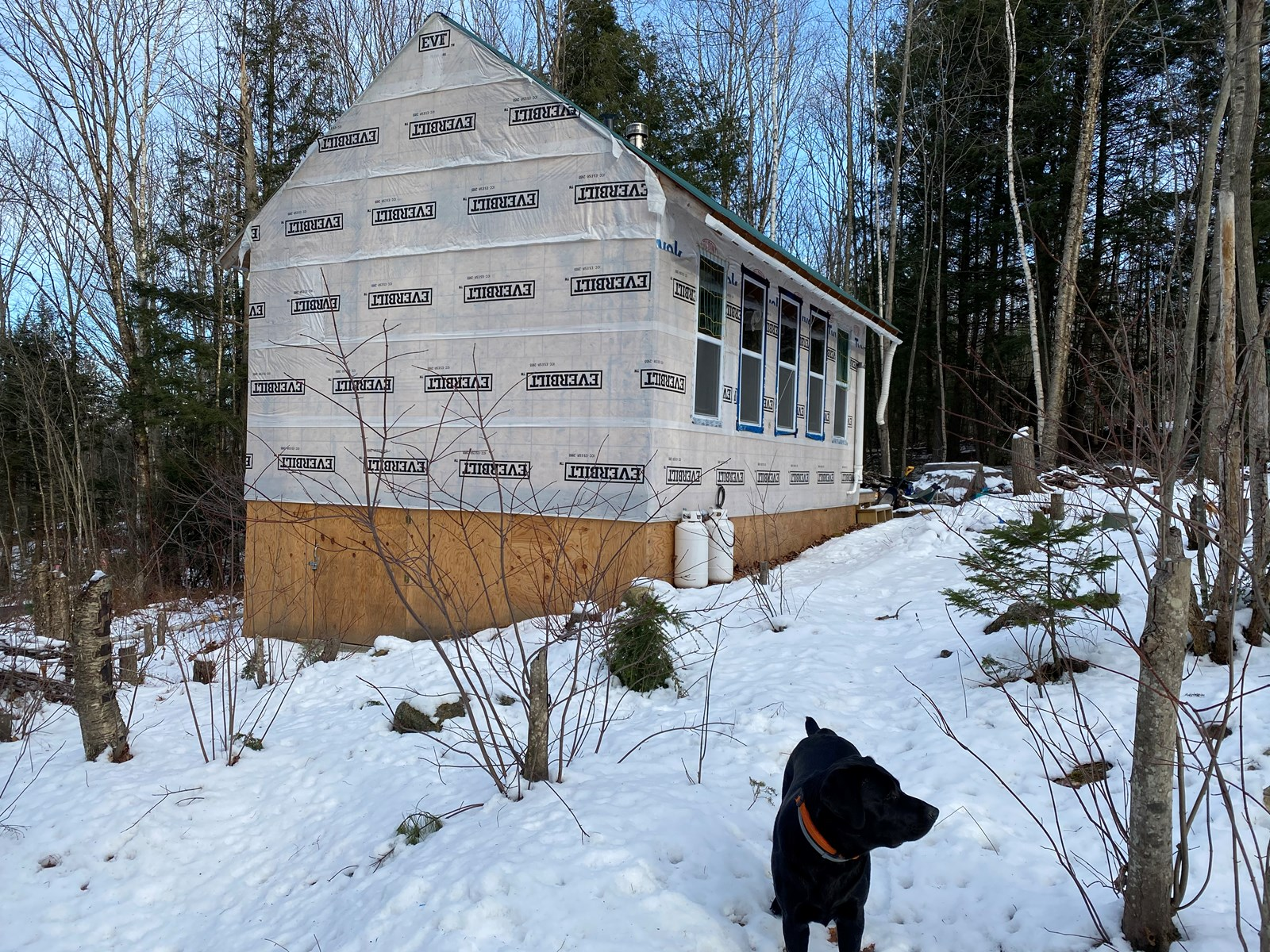Unfinished Cabin in Canton