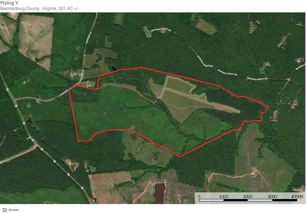 Over 260 Acres Minutes To Kerr Lake, VA