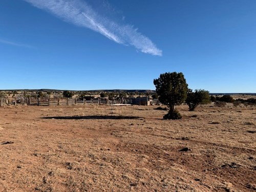South Eastern NM Ranch For Sale