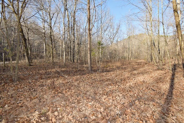 10 Acres Vacant Wooded Land Curry Rd Lobelville $26,200