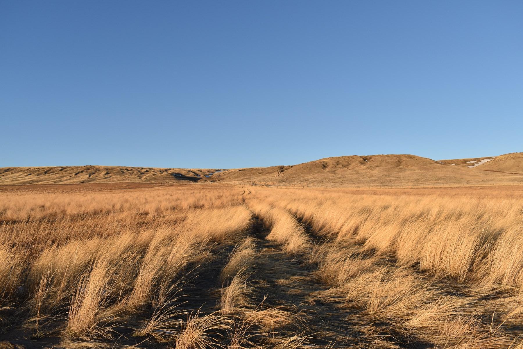 Montana land for sale,