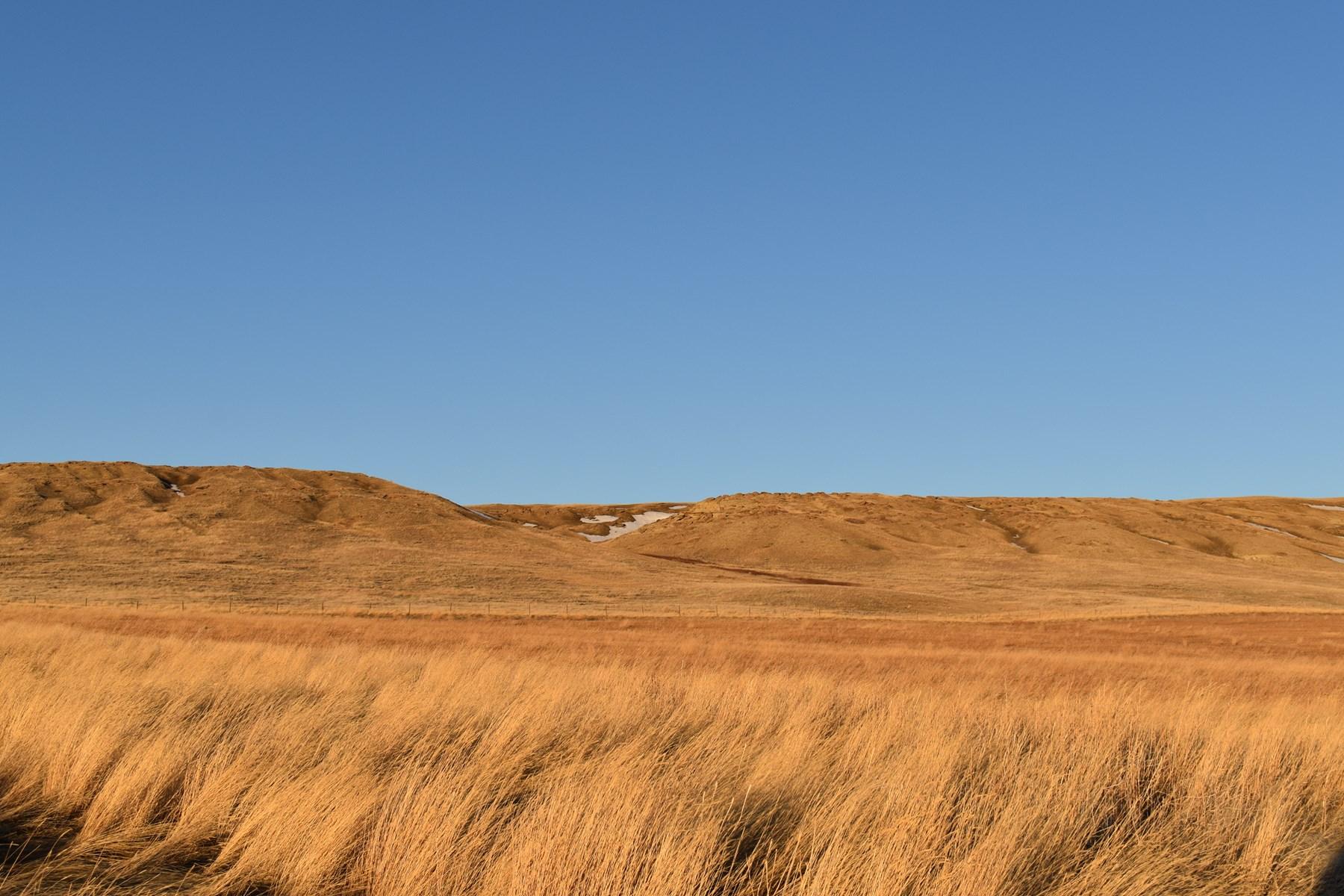 Montana Land for Sale, Acreage