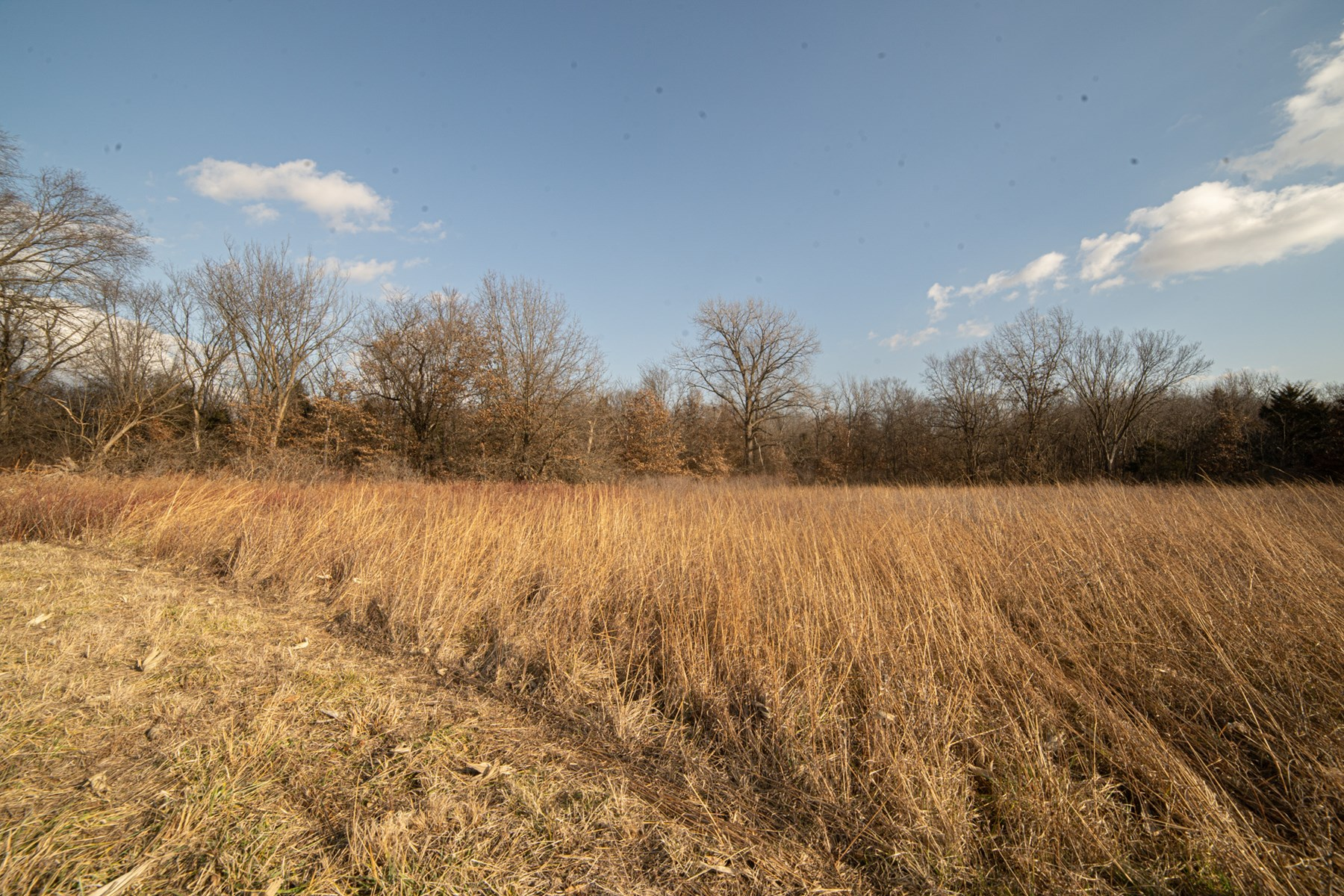 Great small tract of land in Ralls County, Missouri!