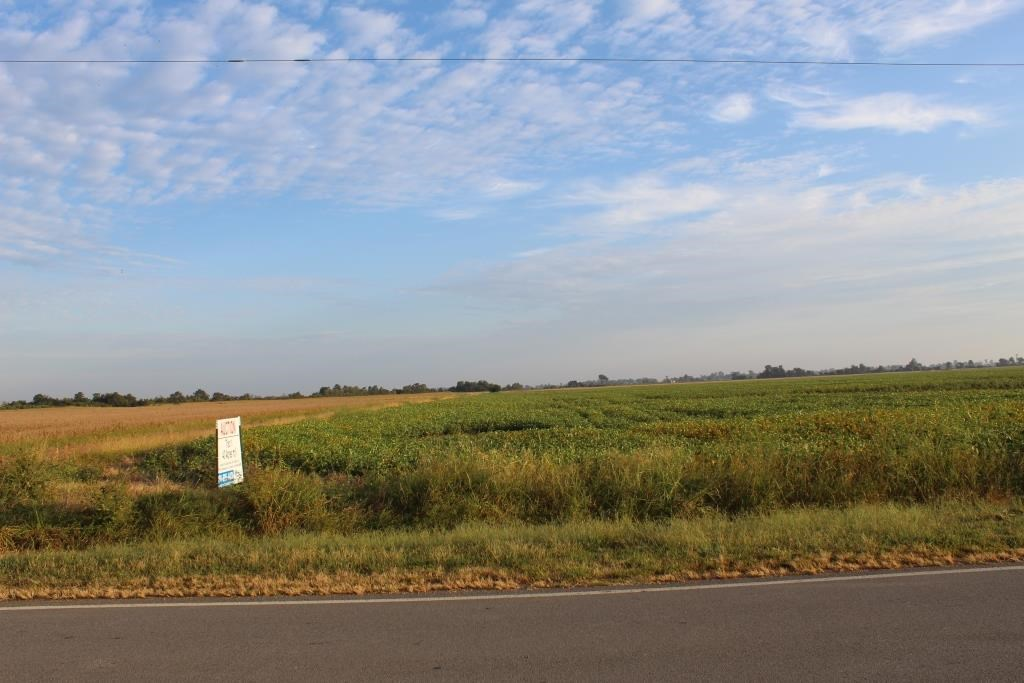 Pemiscot County Highly Tillable Farm Land for Sale Missouri