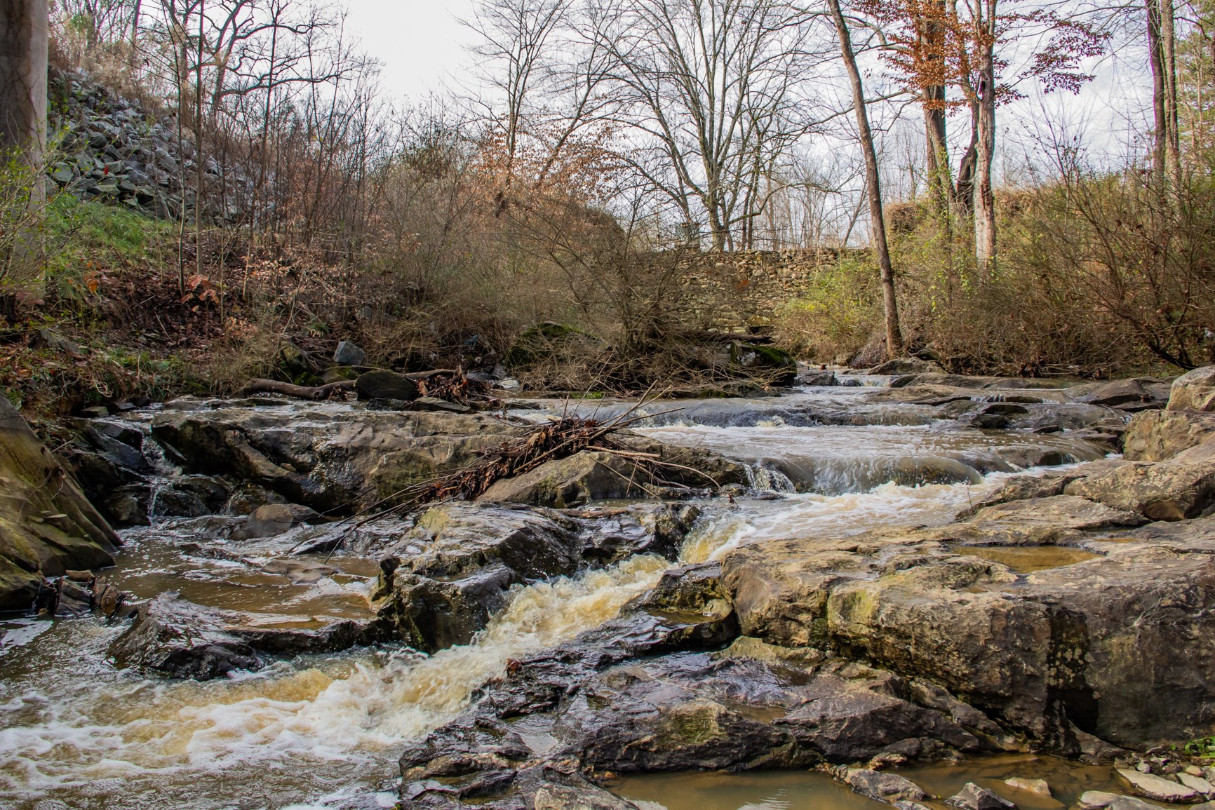 Beautiful Property with large creek in Randleman NC