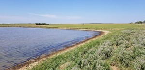 320 ACRES OF AG EXEMPT LAND HUNTING AND CATTLE