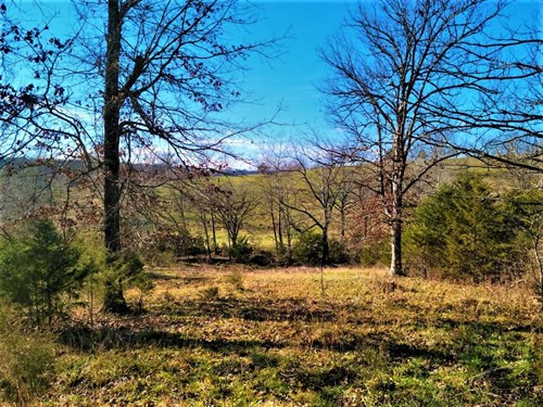 Farm & Ranch with Hunting Land For Sale in Ozark County, MO