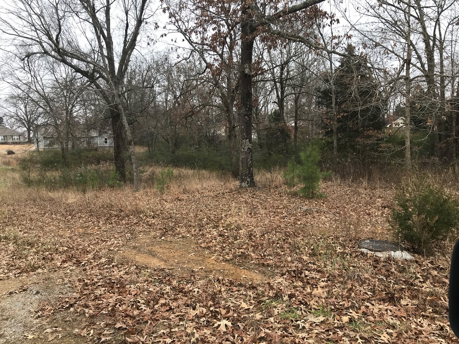 Land for sale lots in Pocahontas, Arkansas for home building