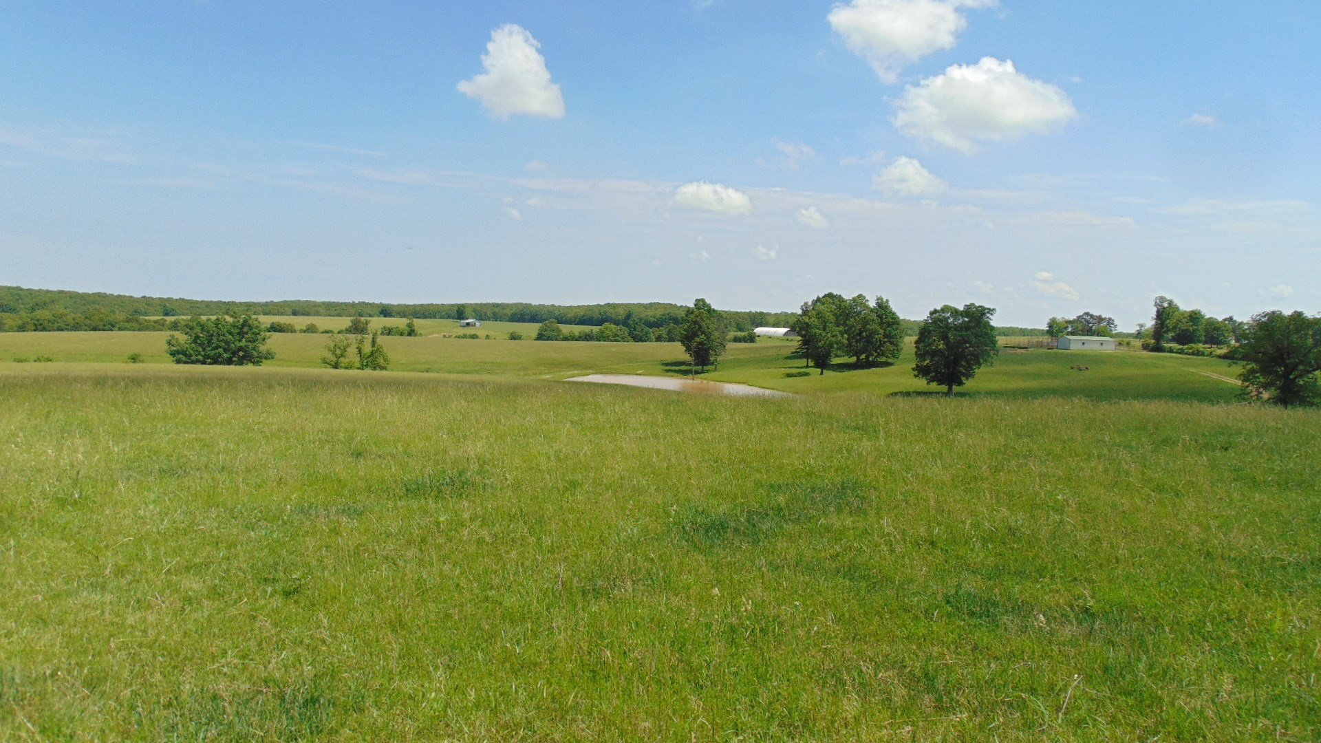 Wright County Cattle Ranch for Sale