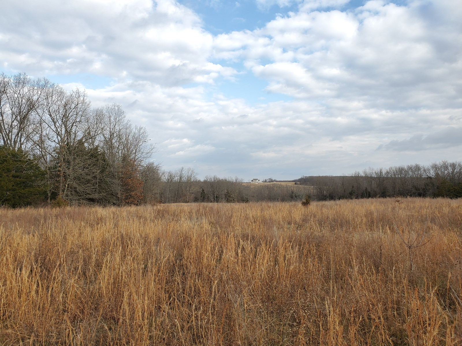 Cattle and Hunting Farm for Sale in Wright County