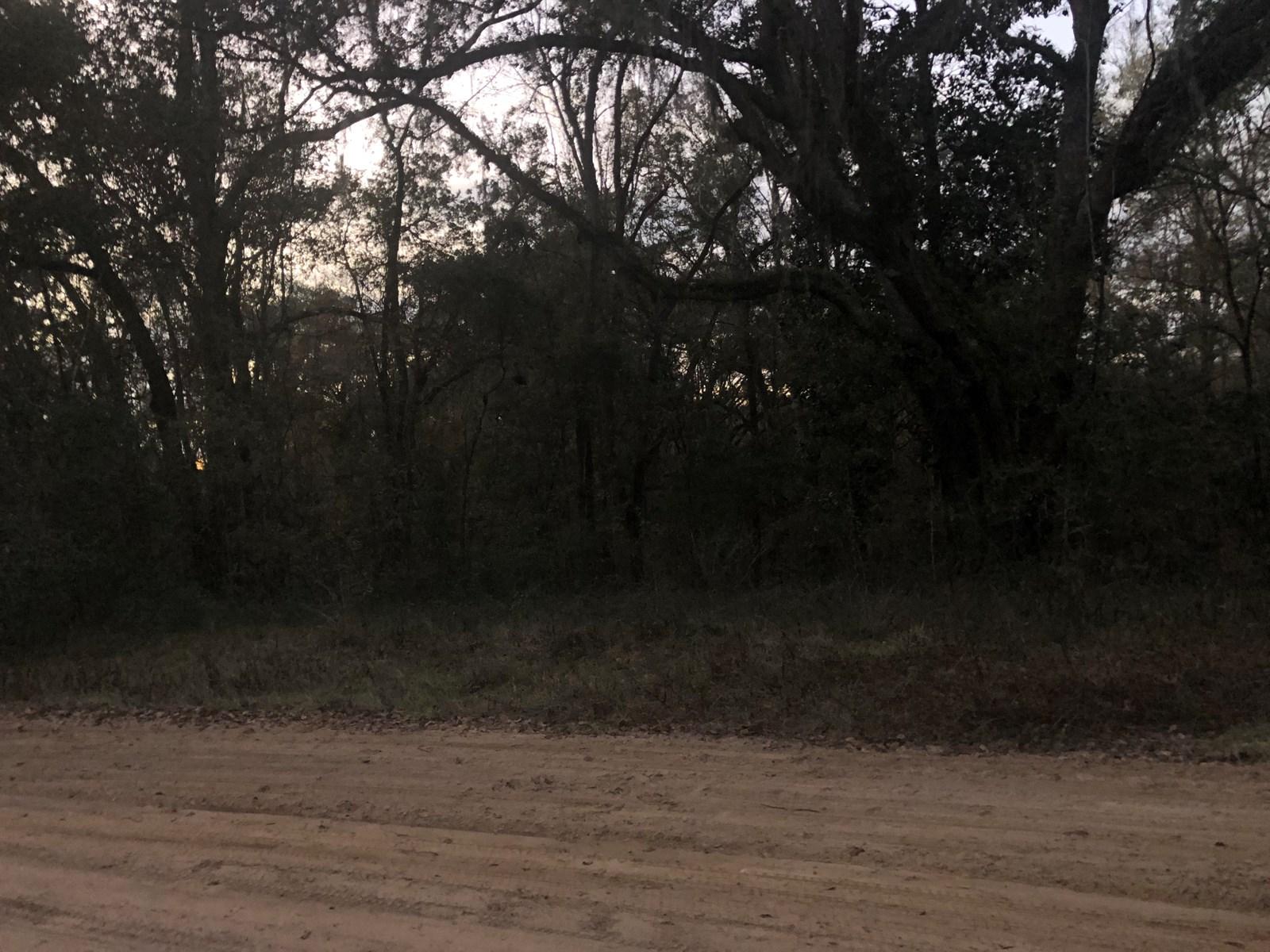 Land For Sale Near Monticello Florida