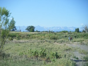 MULTI FAMILY ZONED PARCEL OF LAND FOR SALE, MONTROSE, CO