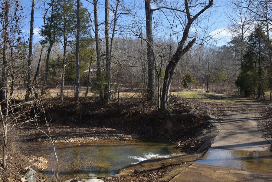 Year around Creek with Crossing