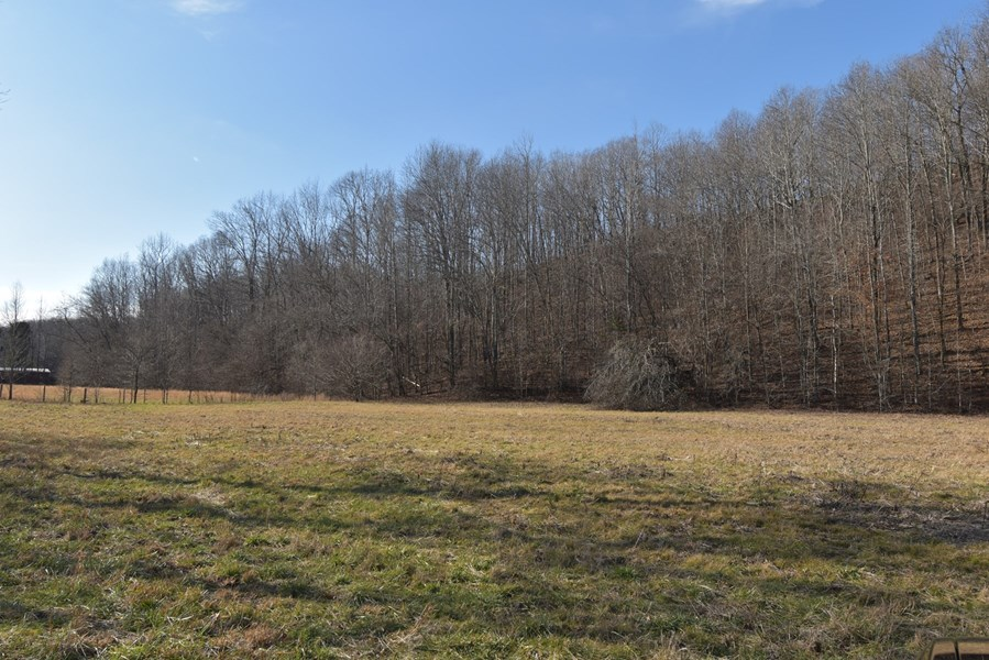 Front Field 5 acres