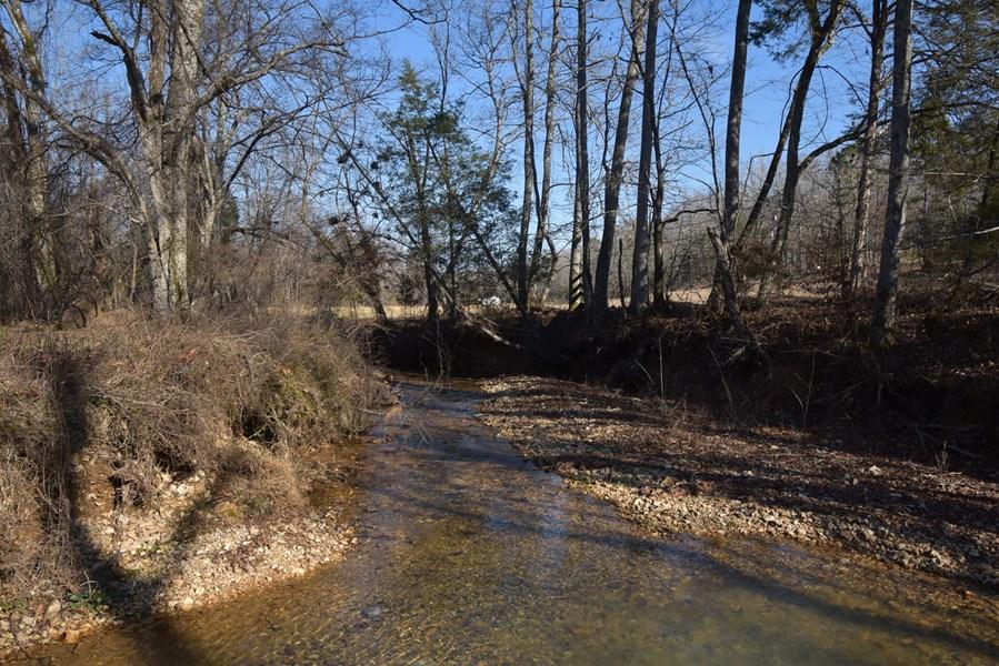 Year Around Creek