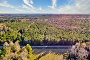 TIMBERLAND - INVESTMENT/RECREATION LAND FOR SALE NW LA