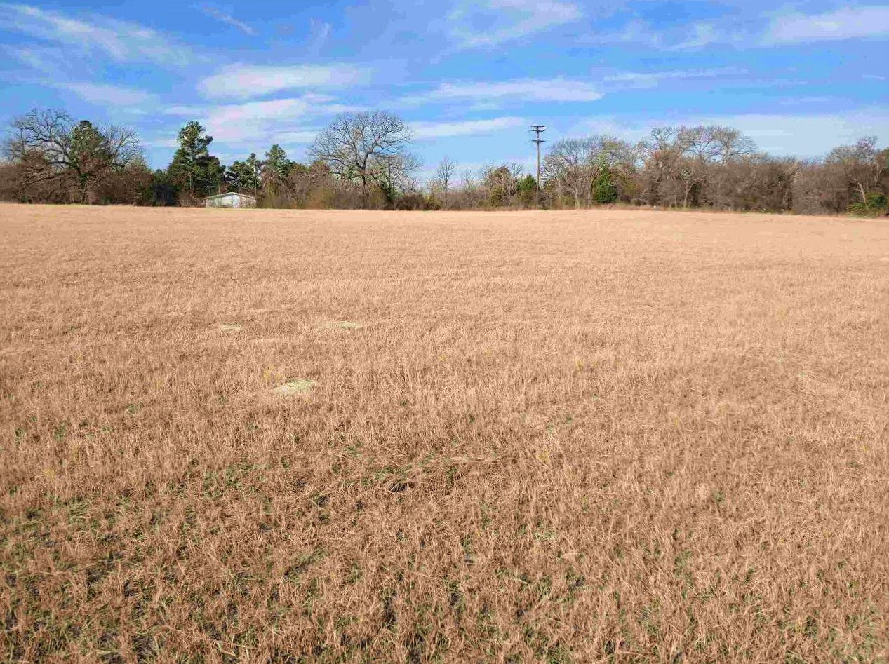 Land for Sale Auction Athens Texas Henderson County