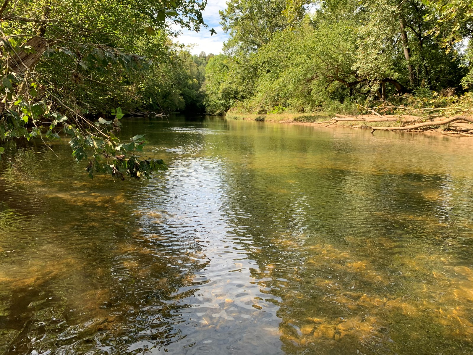 Land for sale in TN with Creek, Septic and RV Camper