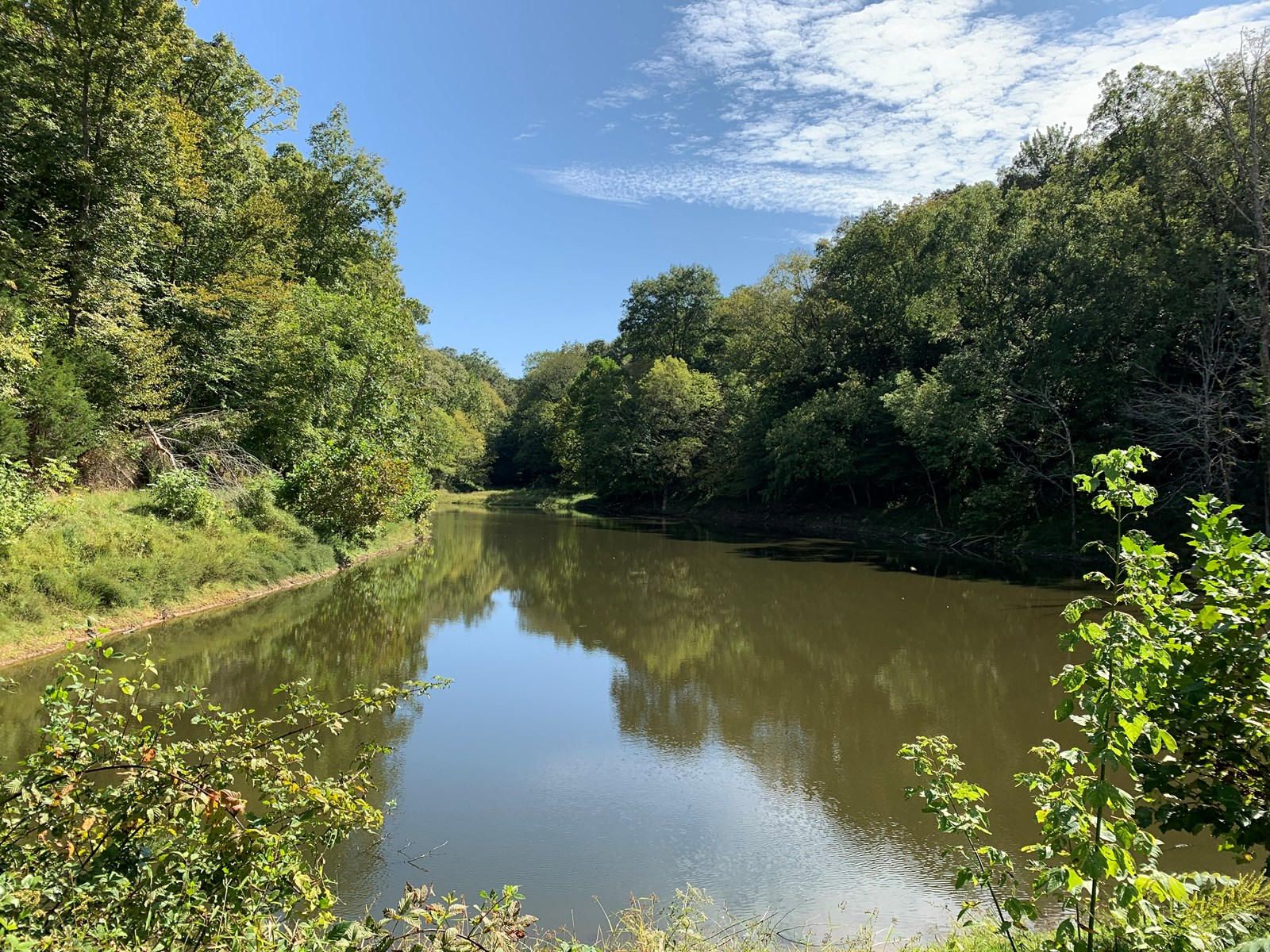 Land for sale in TN with Spring fed pond & building spots