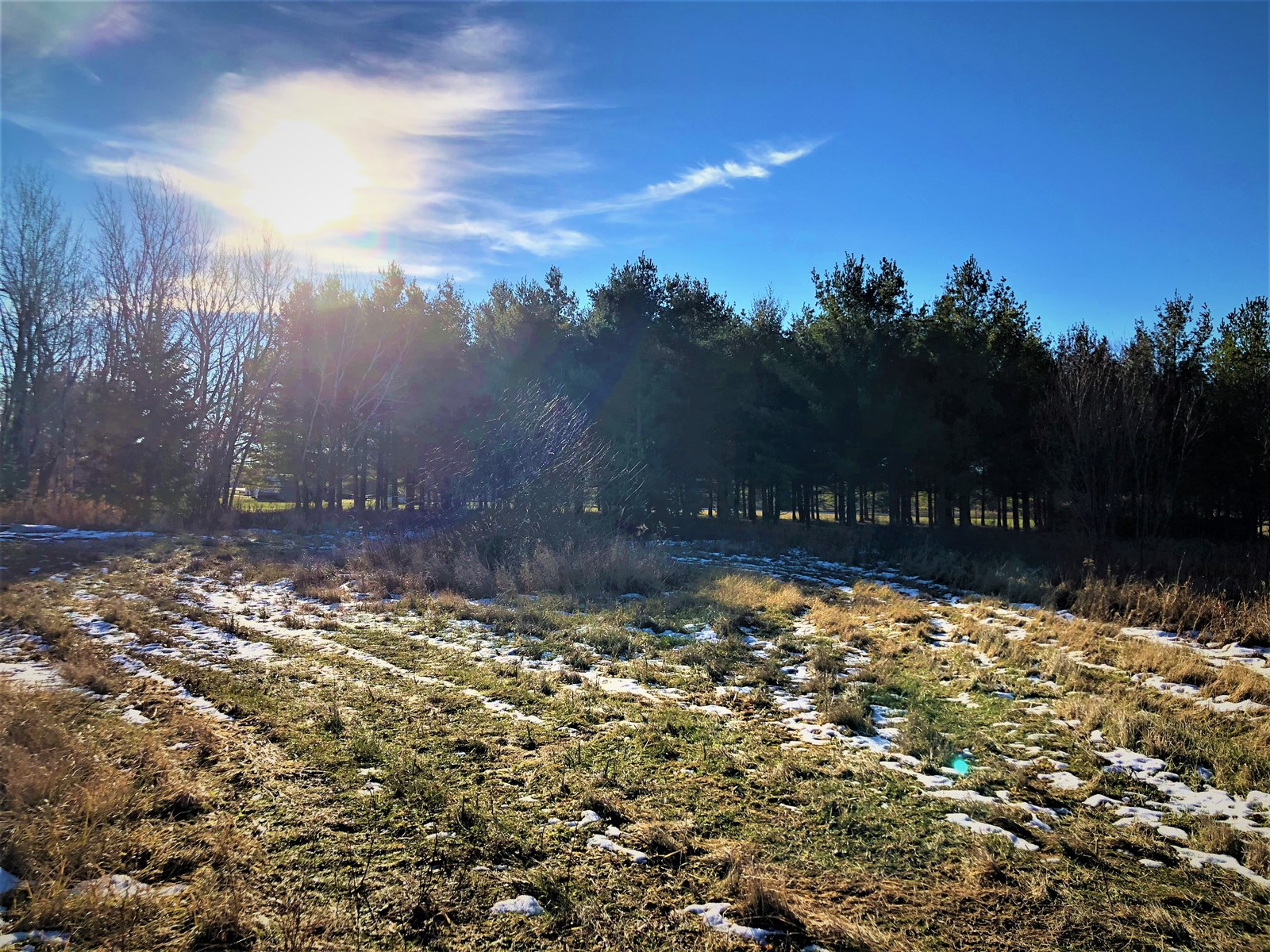 Land for sale in International Falls, MN
