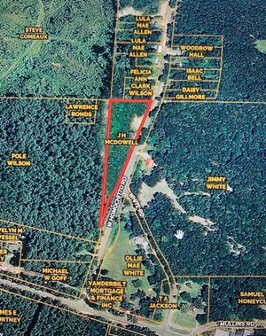 HUNTING LAND FOR SALE AMITE COUNTY CROSBY MISSISSIPPI