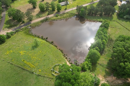 Pasture Land For Sale Lincoln County Brookhaven Mississippi