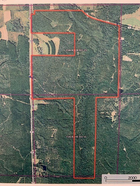 Hunting Land For Sale in Okaloosa County, Florida