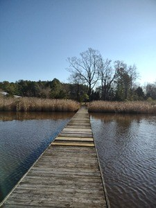 BEAUTIFUL WATERFRONT HOMESITE FOR SALE IN BELHAVEN NC