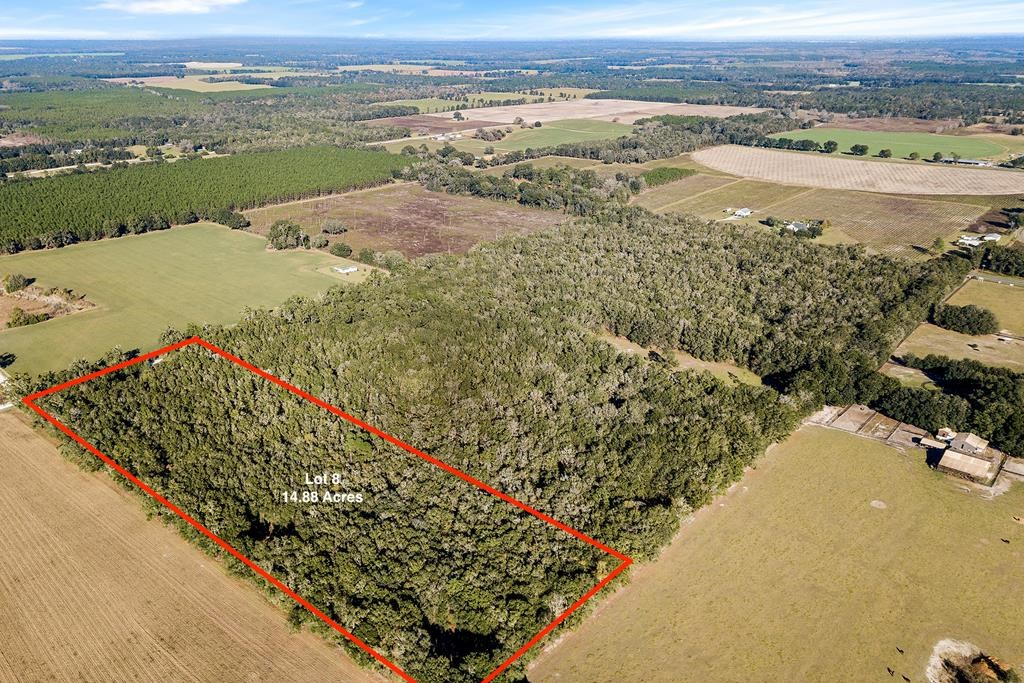 14.88 ACRES IN BELL, FL
