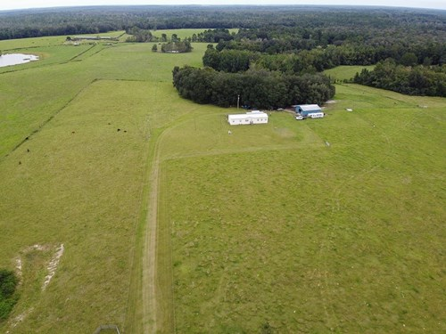 North Florida Horse/Cattle Farm for Sale
